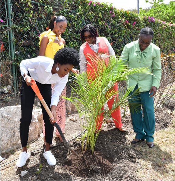 Tree planting initiative on Co-operators compound